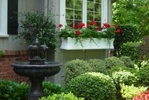 Front Yard / by Emily Favaro