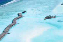 Lux Maldives /  Lux Maldives 4 km'lik kumsalı, büyüleyici su üzeri villaları ve dünya çapında dalış merkezi ile güney Ari Atoll'ün Dhidhoofinolhu adasında  bulunuyor. Spontan atmosferi her köşeyi döndüğünüzde sizi değişik sürprizlere hazırlıyor plajda sinema gösterimi yada doğaçlama müzikal performanslar gibi. .. Tesis hakkında daha detaylı bilgi için; http://www.maldiveclub.com/maldivler-otelleri/lux-maldives