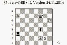 Échecs & Finales / Les exercices d'échecs en finale