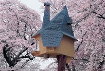 TRAVEL: Tree Houses!!!!!