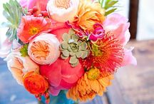 Beautiful Blooms / by Bethany Ritchey