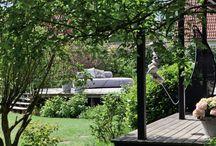 Ideas for a Garden!