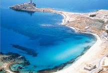 0113 Sardegna - Architettura storica e paesaggio