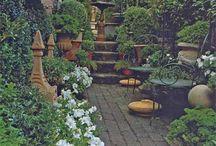 garden / by Arrow Rene'