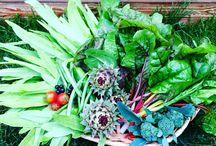 Joanne's veggies & Fruits