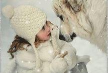 Animali e  meraviglia