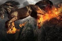 Art =Horse #2 / by Ellen Davis