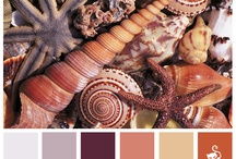 Colour explosion / by Nuria Rovira