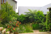 Ashley garden