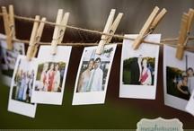 Wedding Board / by Jasmine Pollock