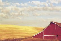 Beautiful Palouse / Scenes from around the Palouse in Eastern Washington - where our Pullman campus is located.