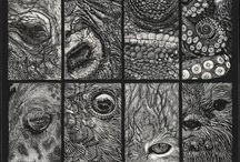Animals & Wildlife Art Exhibition