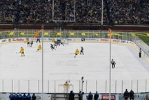 2013 Winter Classic: Leafs vs Red Wings / by Toronto MapleLeafs