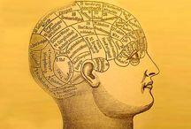 Exercitiul mintii