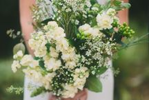 Green and White / by Jennifer Mirabella
