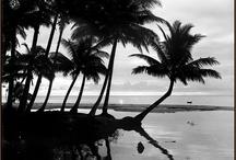 Kepulauan Melayu