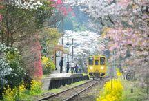 Train Stations Beauty