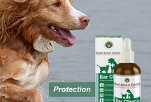Ear Clear / leaning, soothing and maintaining ear health – naturally Ears can be a haven for dirt and grime. Including Ear Clear into your pet's weekly grooming regime will help clean dirt and wax from the ear to help maintain ear health.
