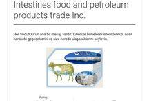 Live animals meat and Skin, Intestines food and petroleum products trade Inc. / HILAL GROUP COMPANIES Live animals meat and Skin, Intestines food and petroleum products trade Inc. Viber – WhatsApp +905326512082 Email : hilalcasing@mail.ru hilalcasing@gmail.com  hilalmeat.kz@yandex.com Web: http://hilalmeatkz.wix.com/hilalgruopcompanies Skype: hilalcasing1968