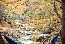 Hiking/Outdoor Gear!!! / by Elizabeth Householder
