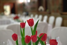 Wedding @ Due Torri Hotel / A magic place to celebrate your wedding!