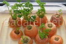 Zelenina zo skla