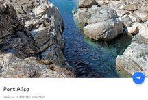 Port Alice