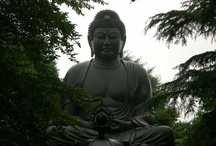 Buddha & Buddhism / Buddha and all things related to Buddhism / by Dwayne Hearn