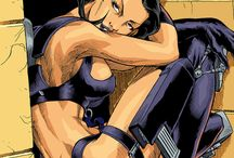 Aeon Flux / The incredible surreal dystopian futuristic world that it first saw on liquid television!