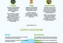 lawncare business ideas