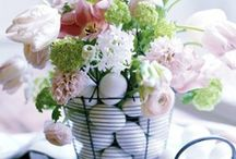 Spring things / by Melissa Valure