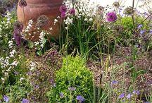 Bassmead Manor Barns Bridal Gardens / #countryweddingvenue #barnweddings #bridalgardens #weddingphotos #weddingday #summerweddings #bassmeadmanorbarns