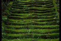 jardins/gardens /