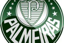 Palmeiras / Paixão Alviverde #Palestra