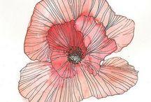 flowers @ lines