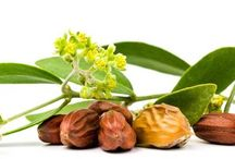 Natural Products / Natural Products - daily use products for Online shopping in australia