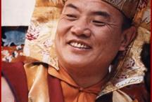 HH Gyalwa Karmapa