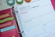 Pregnancy Planner