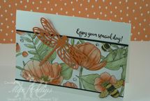 2017 Occasions Catalog Stampin Up
