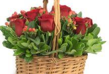 Mi Regalo Molon / Envío de Flores y Regalos a Domicilio en chile. Tenemos a su disposición lindas alternativas de Flores,Arreglos Florales o frutales y desayunos. además de Peluches, Chocolates y Globos para sorprender