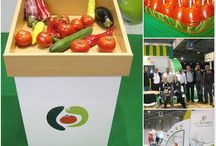 Vegiterraneo around Bulgaria / Promotion programs