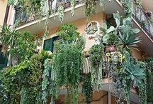 schöne Hausfassaden