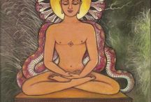 A World of Jainism / Welcome to Jesse's Pinterest board focusing on Jainism.
