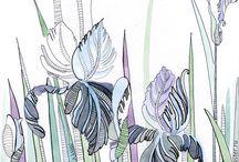 растения графика