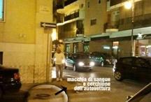 ARCHIVIO BISCEGLIE IN DIRETTA 1 / Notizie da www.bisceglieindiretta.it