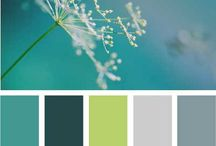 Audacity Colors