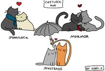 The Cat Lover Side