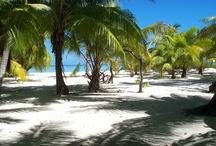Vacation spots / by Trini Thacker