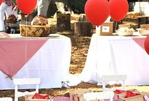 {Rustic Party Ideas}