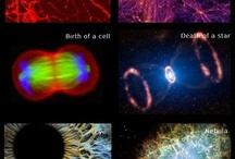 Foto science